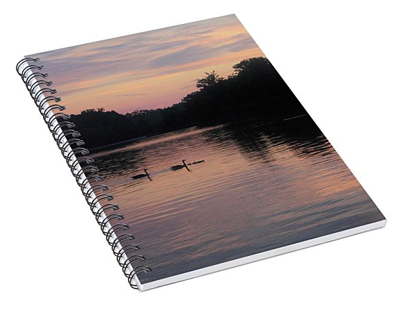 Geese And Their Babies At Sunrise Spiral Notebook