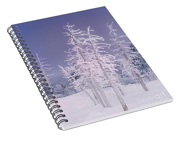 Spiral Notebook featuring the photograph Ghost Trees Yellowstone National Park by Dave Welling