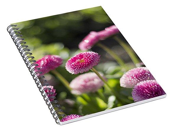 Glittering Daisies Spiral Notebook
