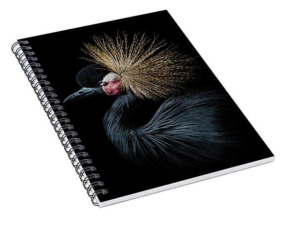 Golden Crown Spiral Notebook