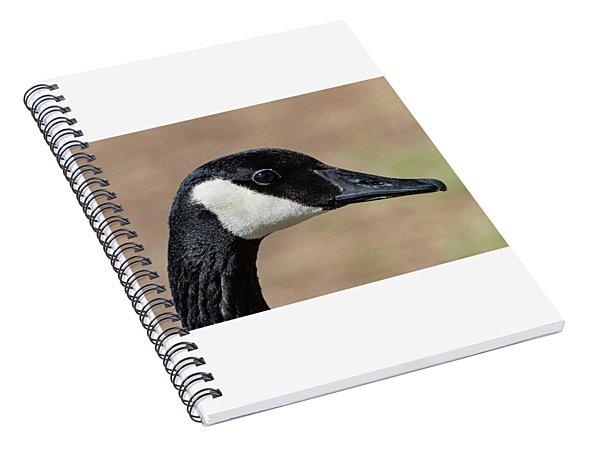 Goose Eye Spiral Notebook