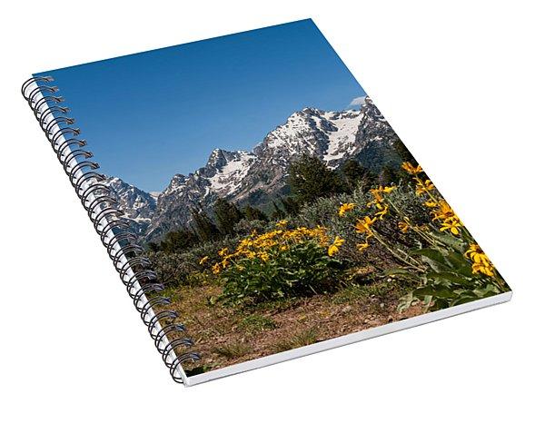 Grand Teton Arrow Leaf Balsamroot Spiral Notebook