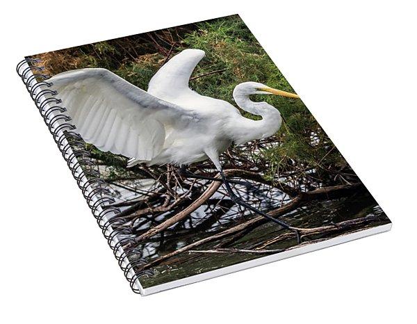 Great Egret 0292-120517-1cr Spiral Notebook