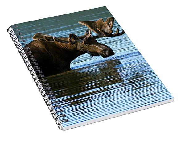 Greeting Spiral Notebook