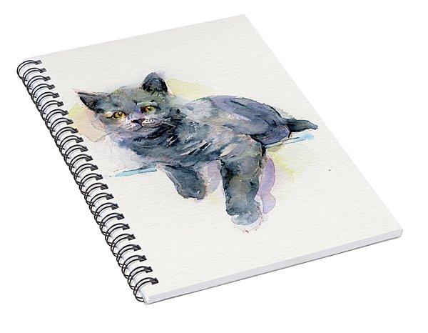 Grey Kitten Spiral Notebook