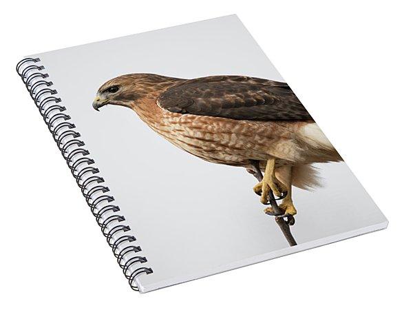 Hal The Hybrid Portrait 2 Spiral Notebook