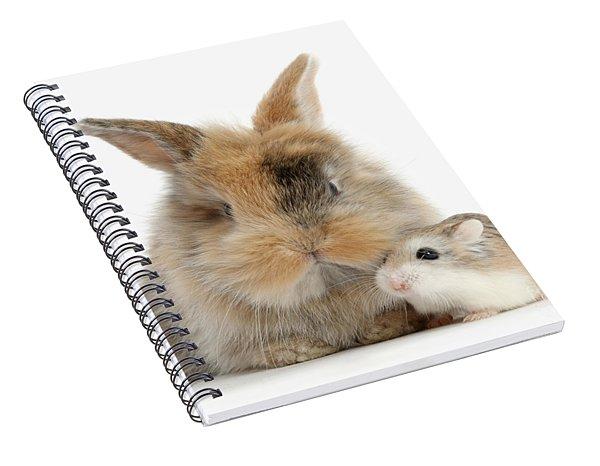 Ham And Bun Spiral Notebook