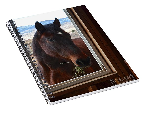 Hay There Spiral Notebook