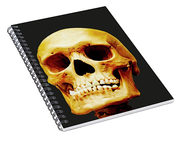 Head Skeleton Spiral Notebook