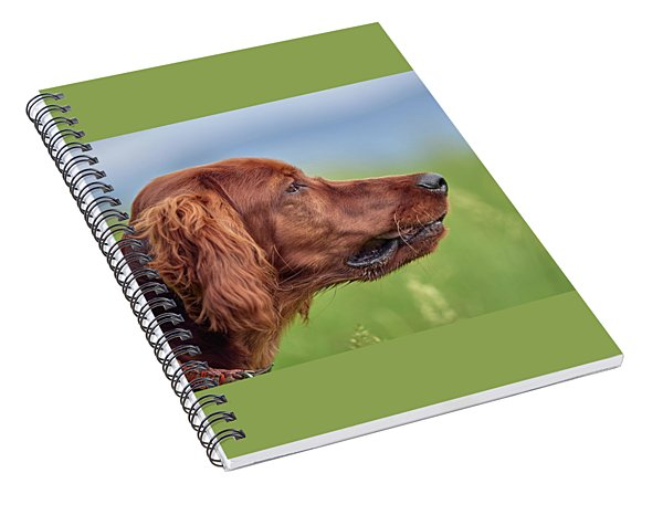 Head Study Spiral Notebook