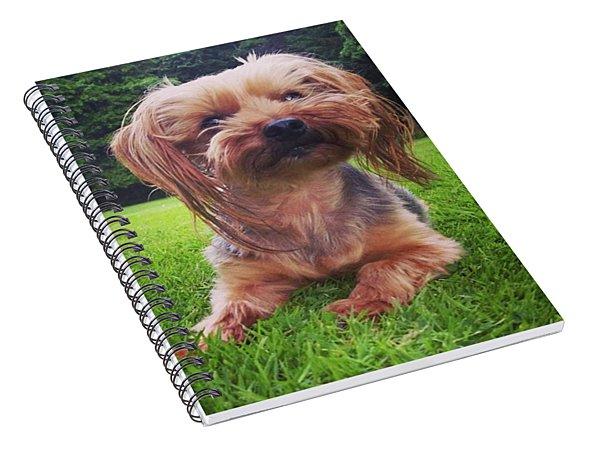 Yorkie Girl Spiral Notebook