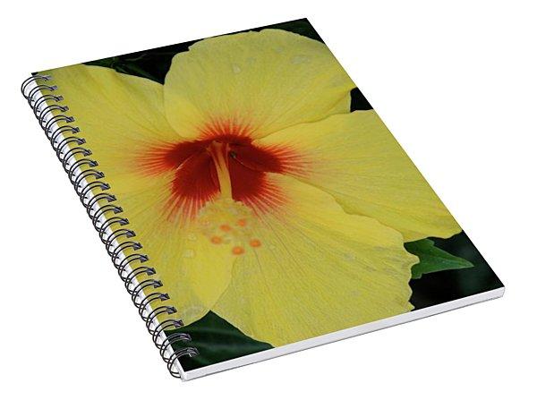 Sun Lover Hibiscus Spiral Notebook