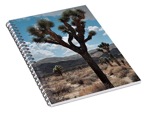 Hidden Valley Joshua Tree Portrait Spiral Notebook