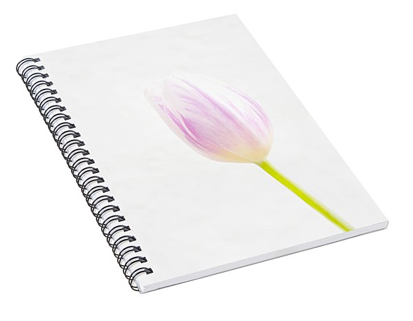 High Key Tulip Spiral Notebook