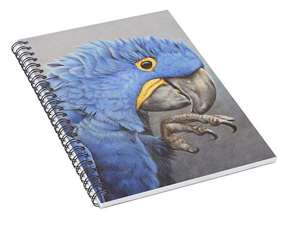 Hyacinth Macaw Spiral Notebook