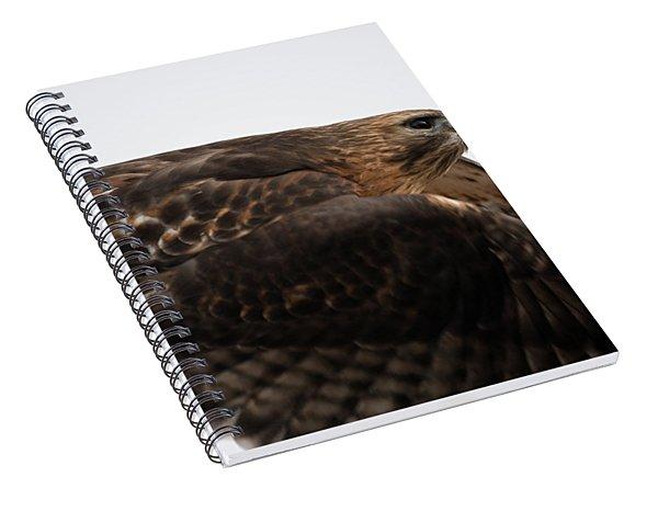 Hybrid Hawk Flyby  Spiral Notebook