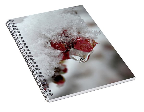 Ice Drip Spiral Notebook