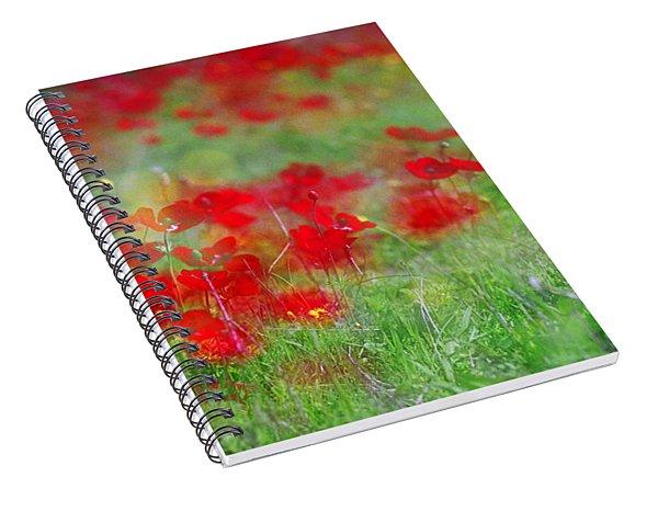 Impressionistic Blossom Near Shderot Spiral Notebook