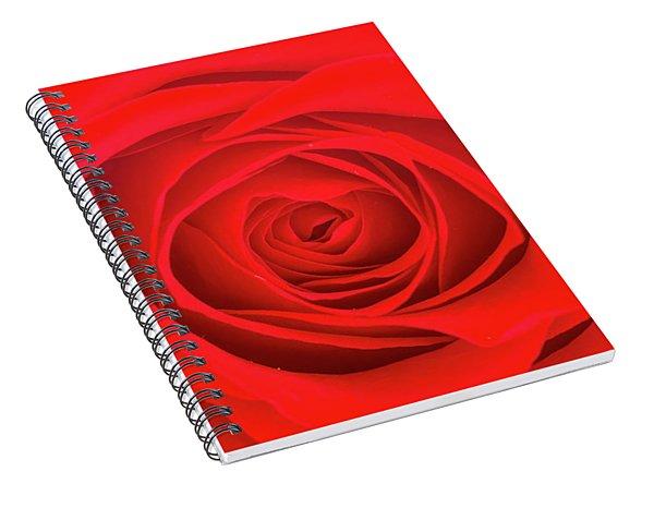 Inside A Rose Spiral Notebook