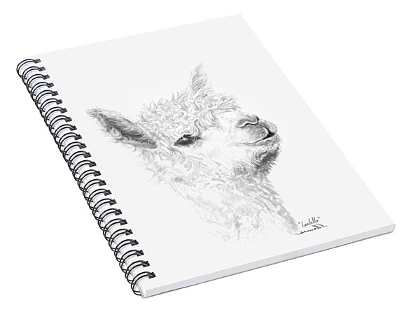 Spiral Notebook featuring the drawing Isabella by K Llamas