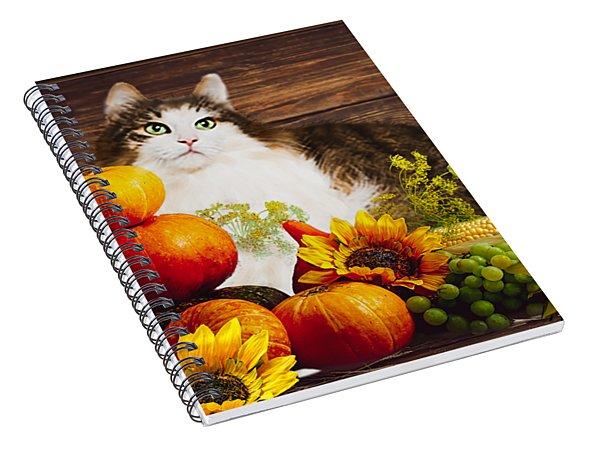 Kitty's Harvest Spiral Notebook