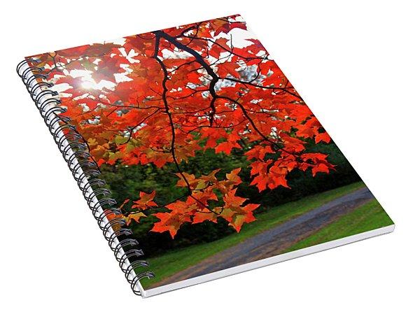Knox Park 8444 Spiral Notebook