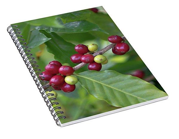 Kona Coffee Cherries Spiral Notebook
