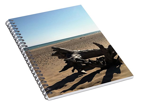 Lake Superior Driftwood Spiral Notebook