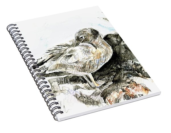 Lava Gull Spiral Notebook