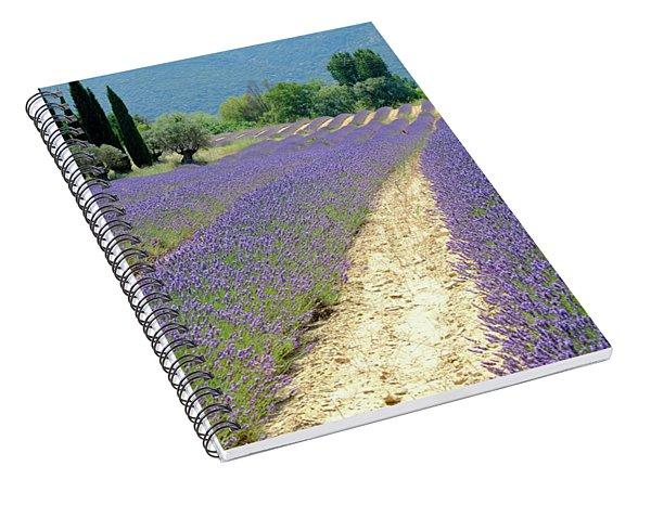 Lavender Flow Spiral Notebook