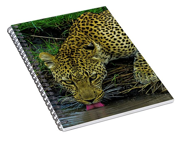Leopoard Drinking At A Pond Spiral Notebook