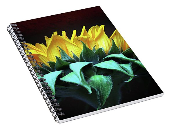Let The Sunshine In Spiral Notebook