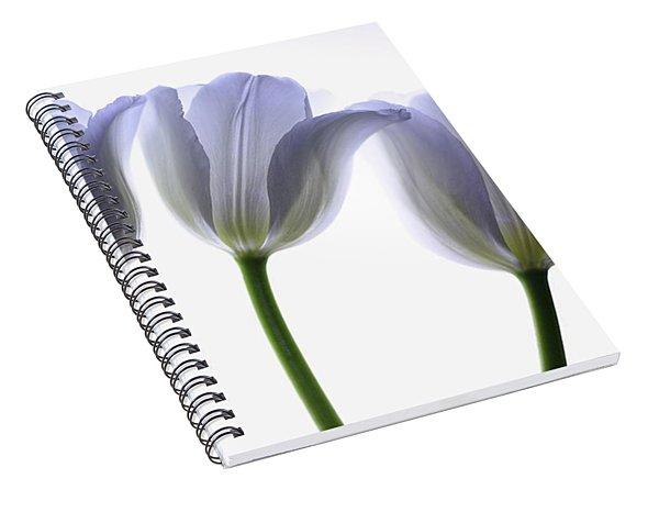 Lilac Chiffon Spiral Notebook