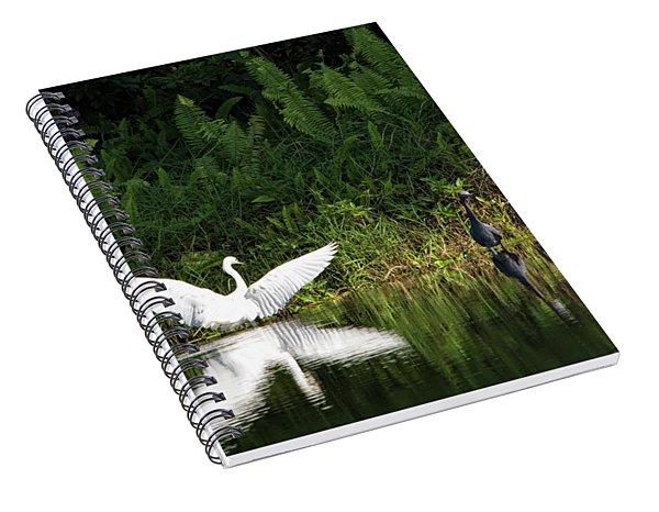 Little Blue Heron Non-impressed Spiral Notebook