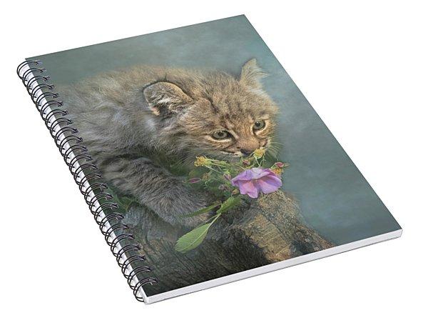 Little Wonders Spiral Notebook