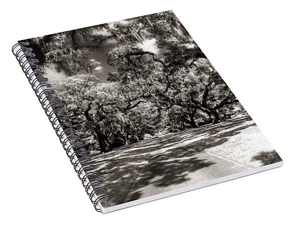 Live Oak Allee Infrared Spiral Notebook