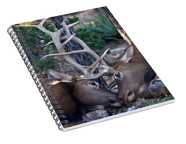 Locking Horns - Well Antlers Spiral Notebook