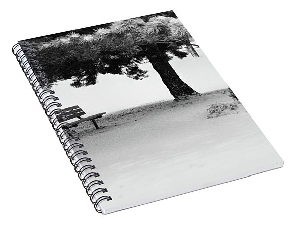Lonely Park Bench Spiral Notebook