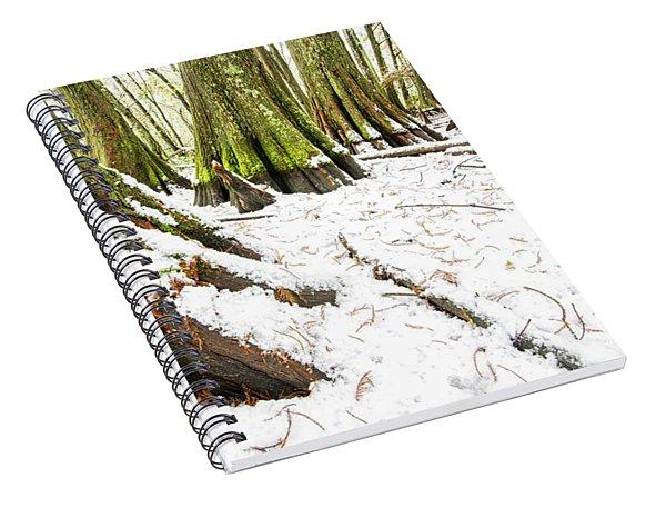 Louisiana Snowfall Spiral Notebook