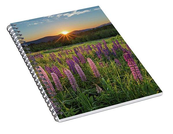 Lupine Sunrise Spiral Notebook