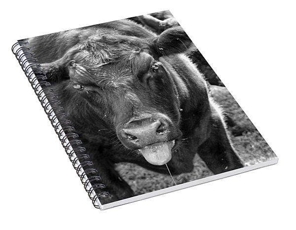 Mad Cow  Spiral Notebook