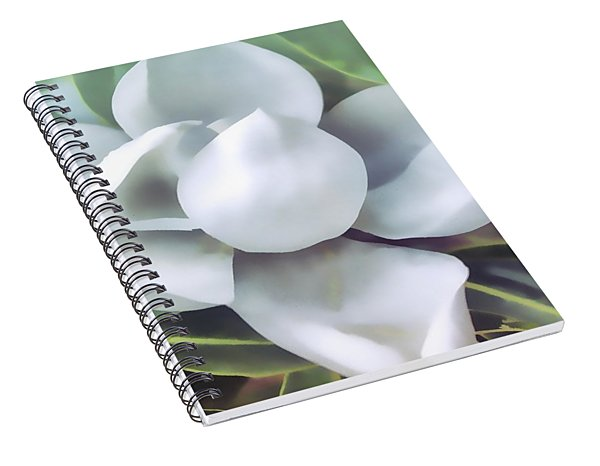 Magnolia Opening 2 Spiral Notebook
