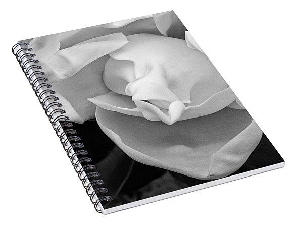 Magnolia Bloom Spiral Notebook