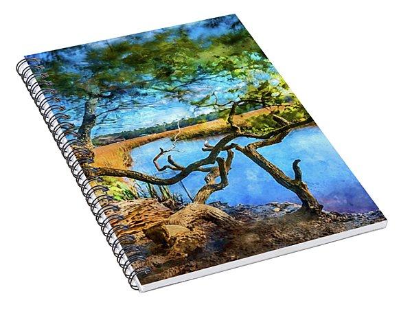 Marsh Dream Spiral Notebook