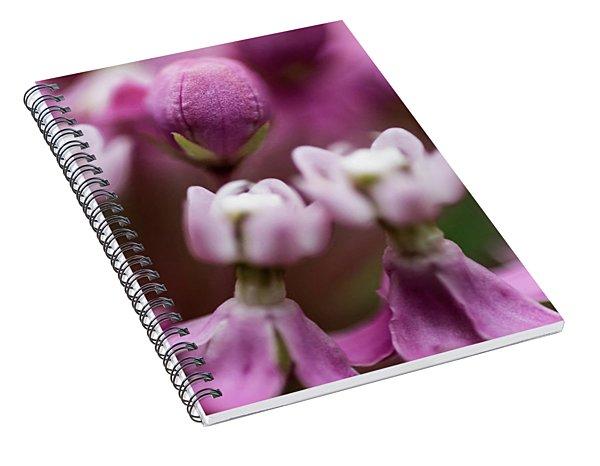 Milkweed Macro Spiral Notebook