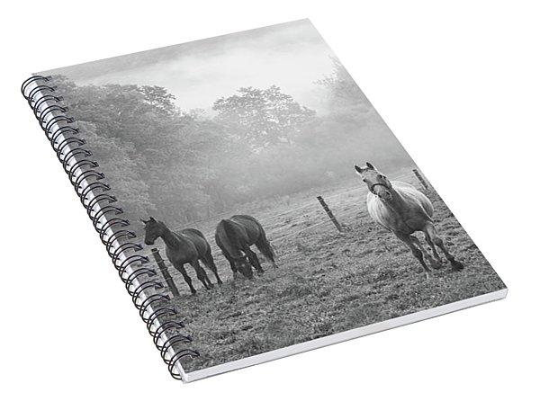 Misty Morning Horses Spiral Notebook