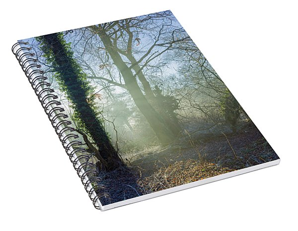 Misty Morning Spiral Notebook