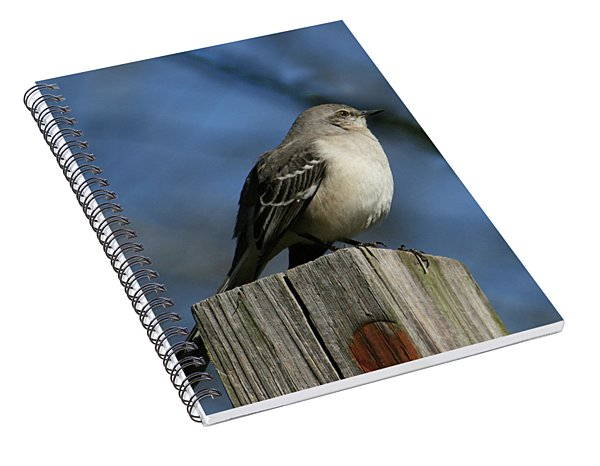 Mocking Bird Spiral Notebook