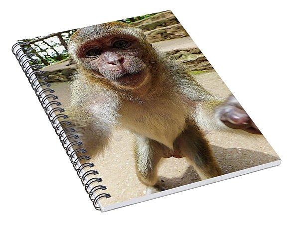 Monkey Taking A Selfie Spiral Notebook