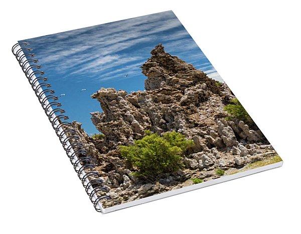 Mono Lake Tufa Spiral Notebook